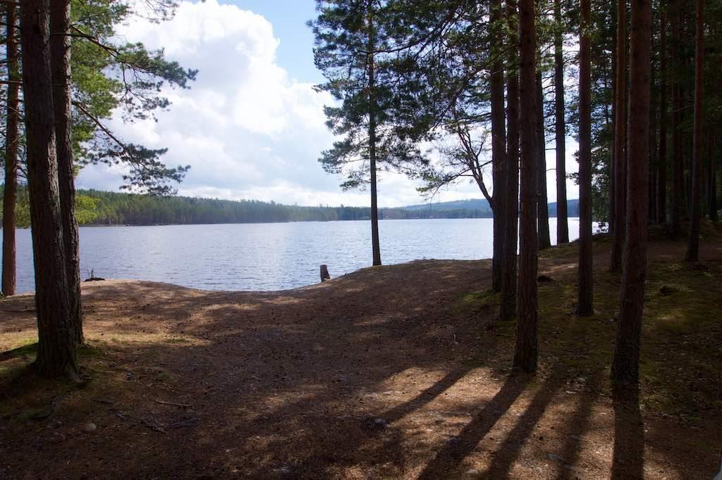 Zomaar weer een mooie plek voor een picknick. Even verderop staan een bankje en een tafeltjes en er is een barbecueplek.