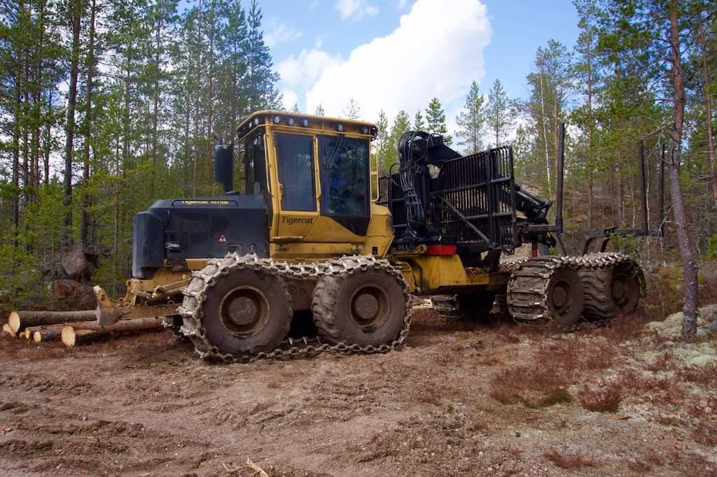 Stel je eens een bosweg voor waar een paar keer zo'n machine overheen gereden is.