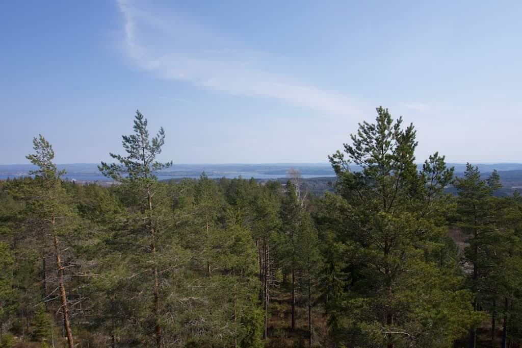 Uitzicht over Fryksdalshöjden.
